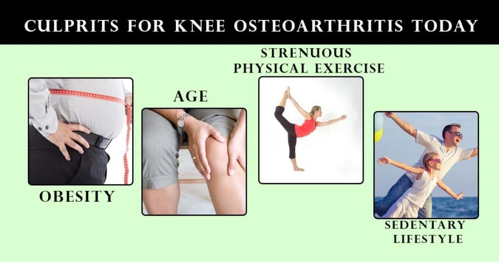 Culprits For Knee Osteoarthritis Today