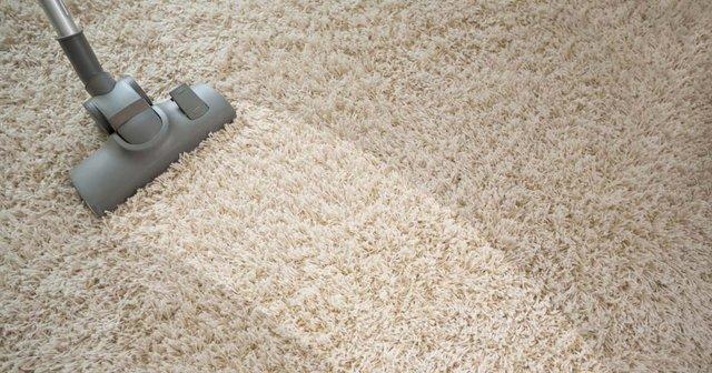 carpet cleaned